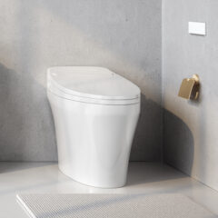 Intelligent Toilets & Bidets
